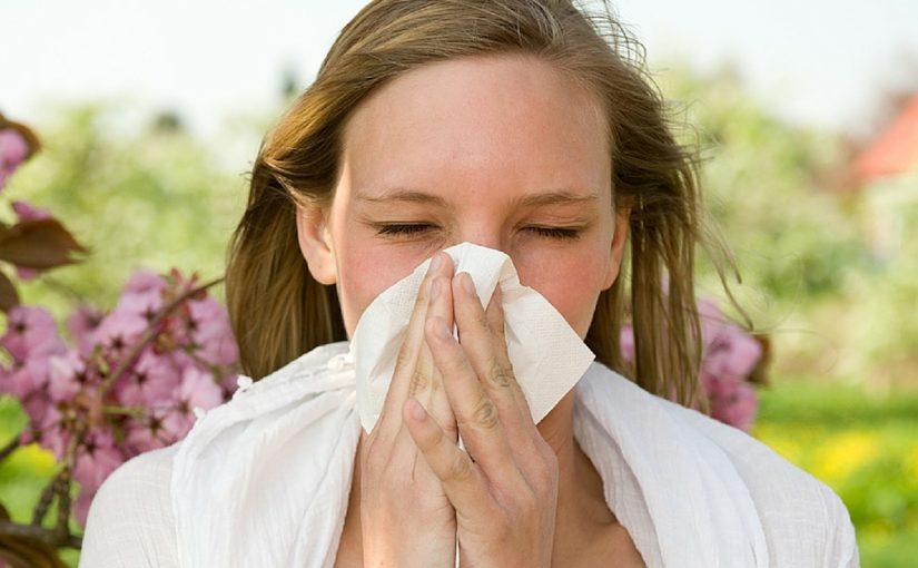 O que ácaros, zoonoses e alergias têm em comum? Descubra aqui!
