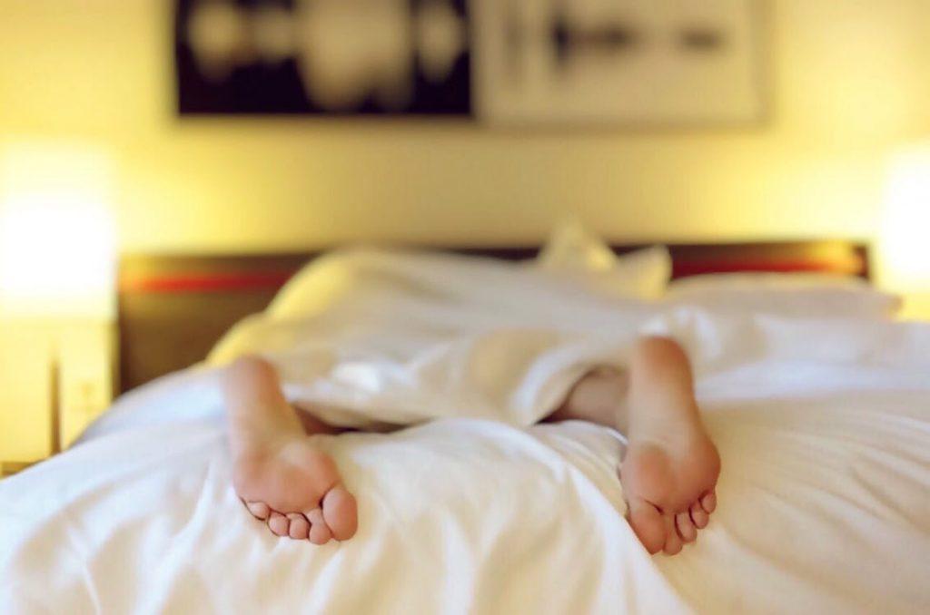 dedetização percevejos de cama
