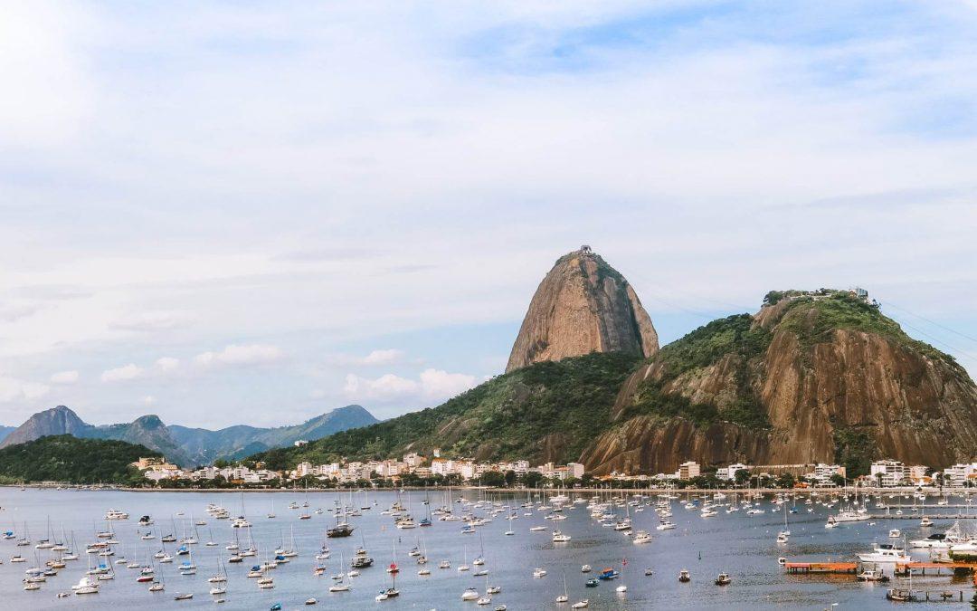 Dedetização de baratas no Rio de Janeiro