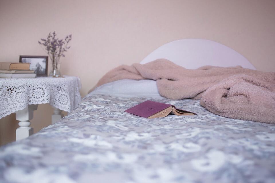 Dedetização de percevejo de cama no RJ? Conte com a Imuniservice