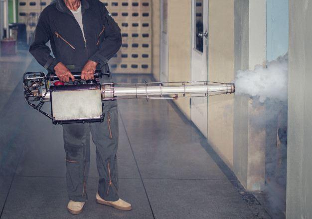 Dedetização em área industrial: conheça os principais métodos de controle de pragas