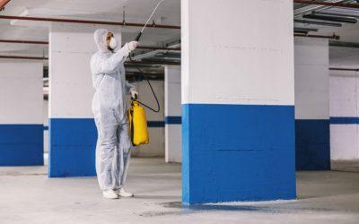 Dedetizadora de condomínios: conheça as pragas mais controladas