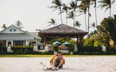 Dedetizadora RJ: Como proteger minha casa de praia contra as pragas